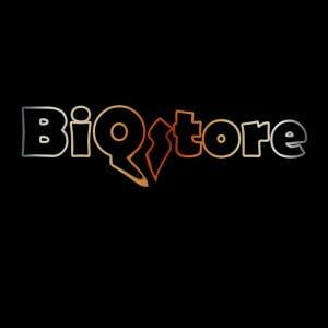 BiQStore - digitalt lärande